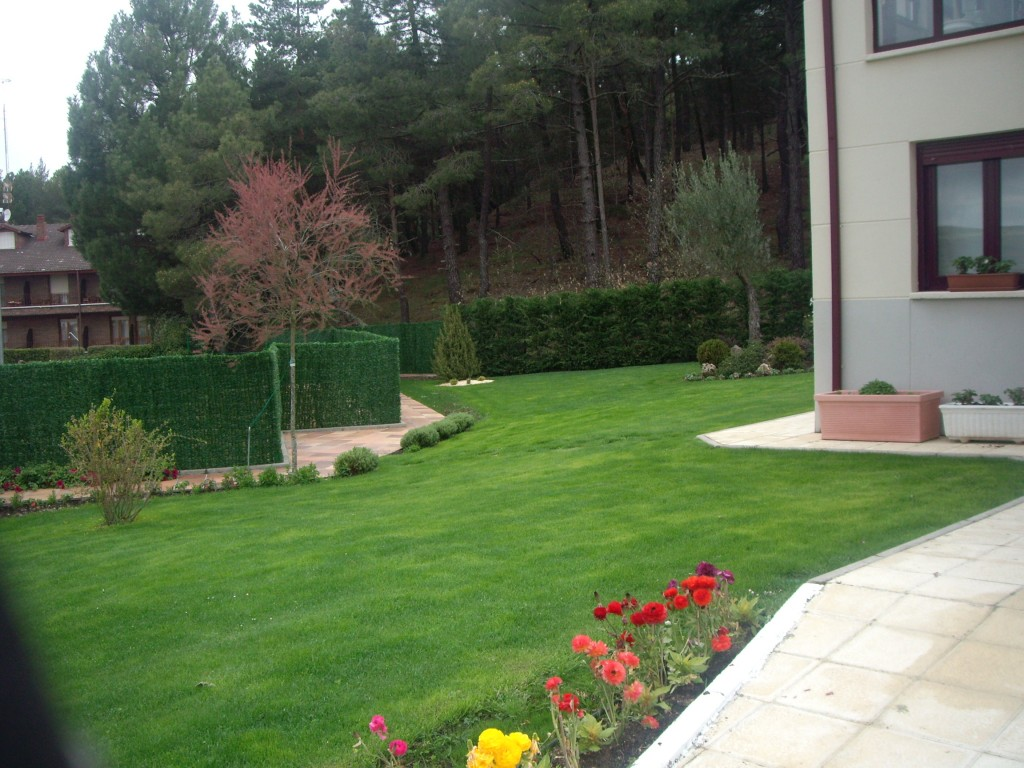 jardin saldaña