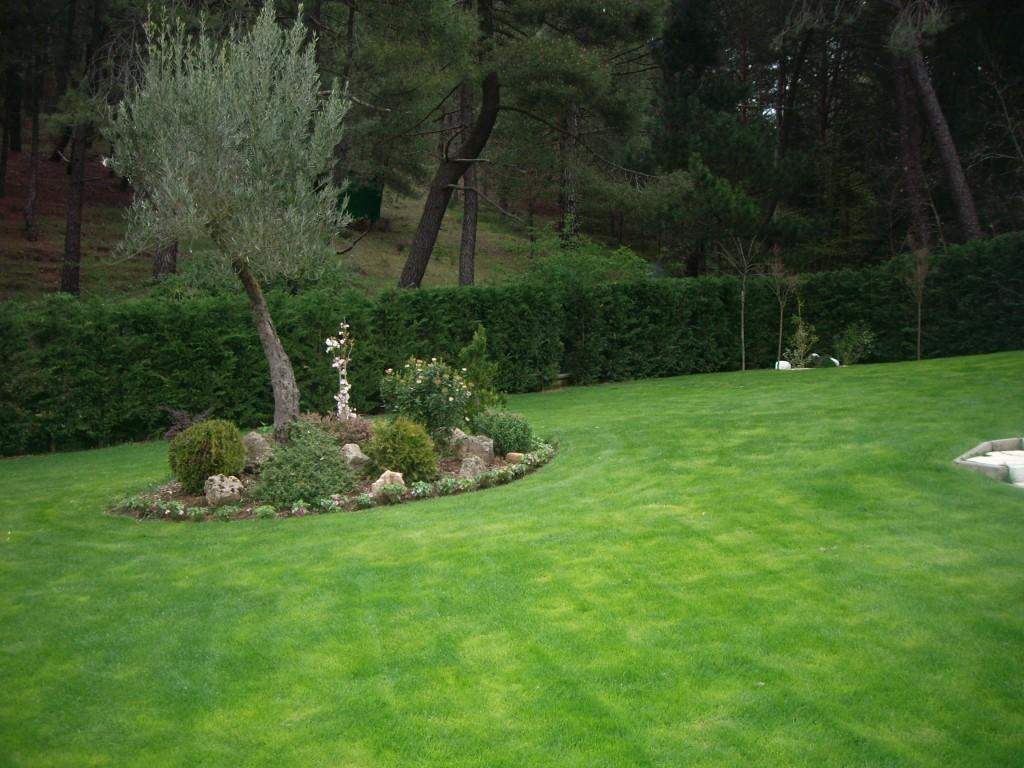 jardin saldaña 2